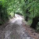 In cammino verso Montisoni, tra storia e natura